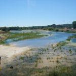 Praia Fluvial e Parque de Merendas do Couço – Coruche