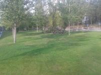 Parque Merendas Viseu