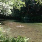 Praia Fluvial da Lagoa – Terras de Bouro
