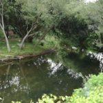 Praia Fluvial e Ponte de Vila Fria – Felgueiras