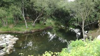 Praia Fluvial de Vila Fria
